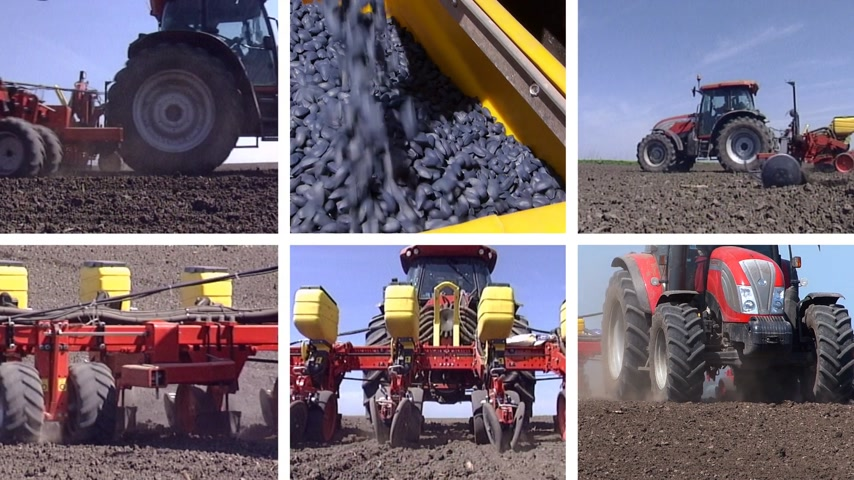 sojový : Tractor sowing and cultivating field, planting corn, soybean and sunflower. Split screen, several different footages in collage Dostupné videozáznamy
