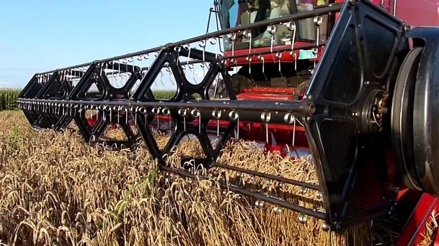 farm equipment : Wheat harvest, Combine in action slow motion Stock Footage