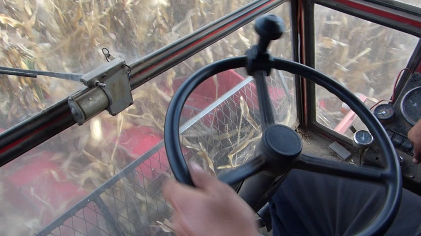 drive : Farmer drives a combine, harvest corn Stock Footage