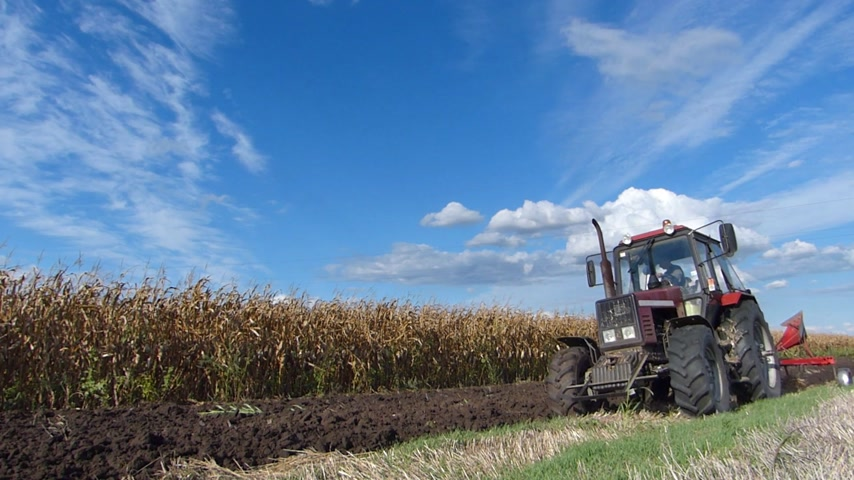 plowman : Tractor plowing a field on a beautiful day