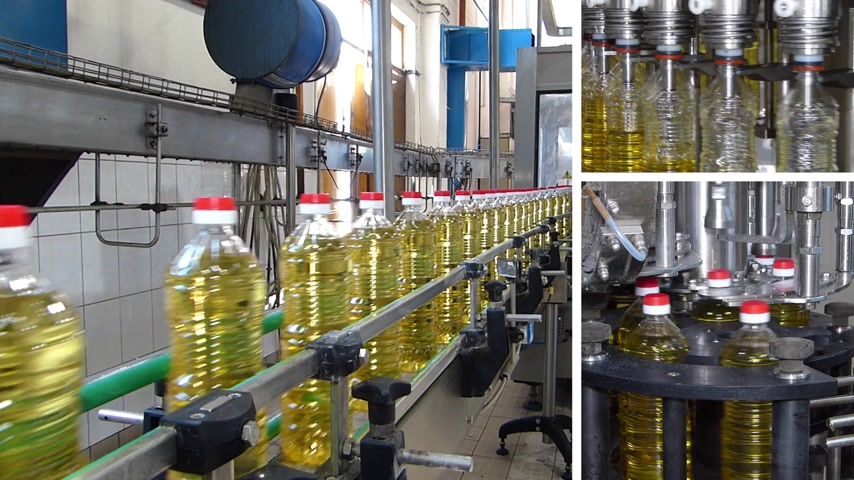 paketleme : Sunflower oil in the bottle moving on production line in a factory, filling machine, montage in split screen Stok Video