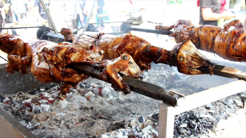 sheep pig : Meat on the spit, delicious roasted meat from sheep and pigs
