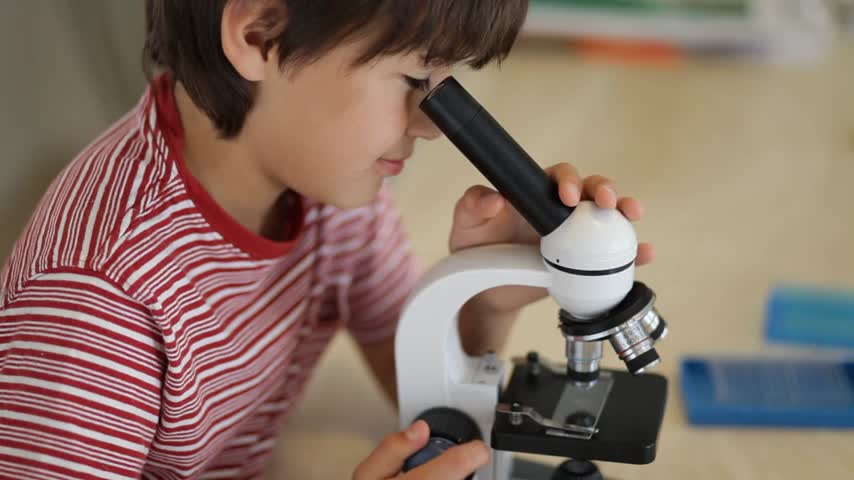 looking : A young school age boy looks through a microscope
