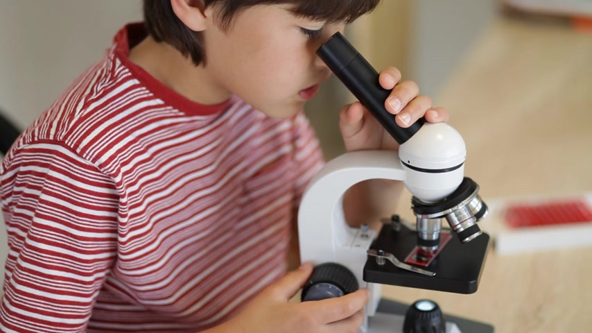 experiment : A young school age boy looks through a microscope
