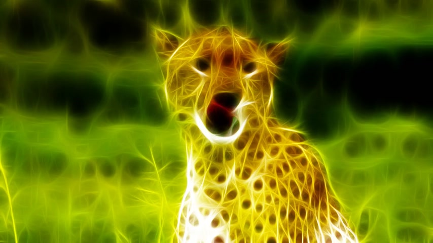 gepard : Fractal rendering - cheetah in nature environment  Very realistic and high resolution animation 1080p HD