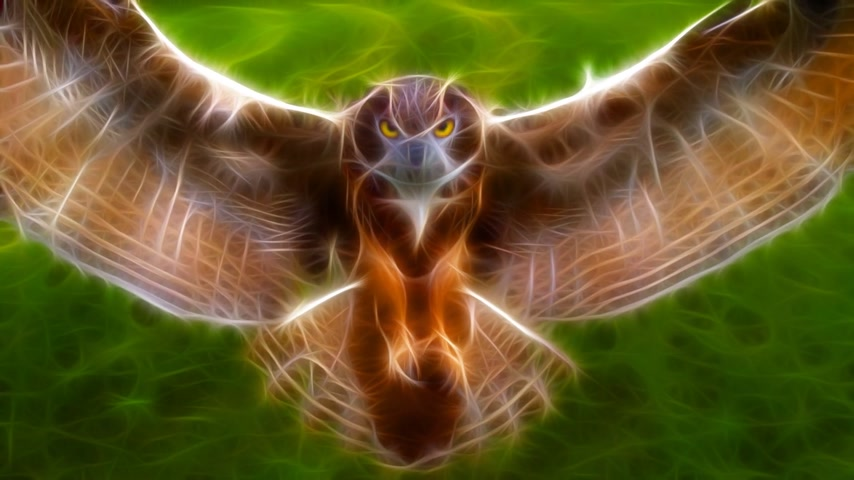 нападение : Fractal Rendering Owl Attack