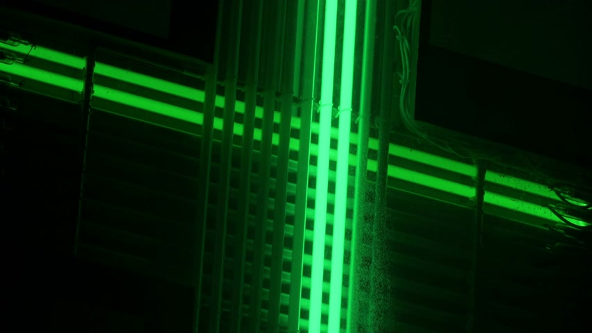 Flashing green neon lights. Abstract composition of neon lamps. A fragment of a luminous sign at night. Wideo