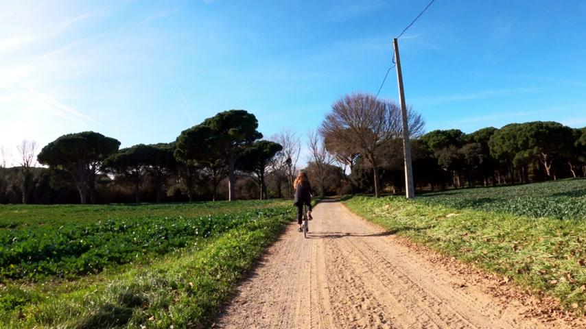 A girl with long hair rides a bicycle on a rural road among fields, forests and meadows. Picturesque countryside. Rural bike ride. Alleys, forests with pines and cypresses. Golden light. Wideo