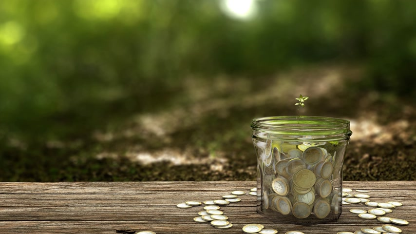 investimento : Plant growing from money jar. Concept of financial investment. 4k footage.