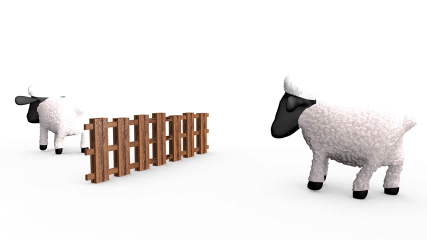 koyun : Counting sheep. Sheep jumping over a barrier. 4k video loopable.