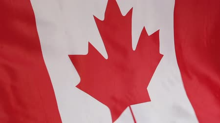canadense : Closeup of the Canadian national flag in slow motion