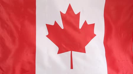 folha : Textile flag of Canada Stock Footage