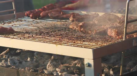 after fire : Barbecue grill with evening light Stock Footage