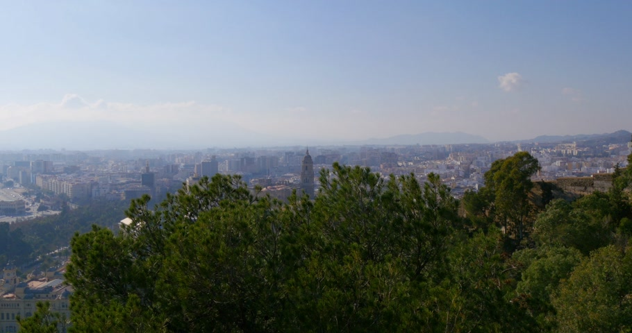 malagueta : malaga day light famous cathedral pine view 4k spain Stock Footage