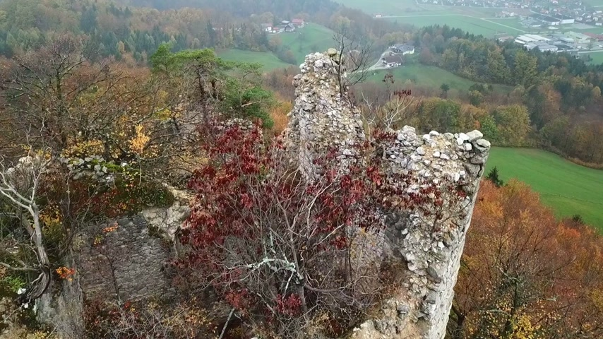 fortificação : Aerial: Old castle ruins on top of the hill covered with bushes and trees. Flying on early autumn morning sunrise over Slovenian countryside.