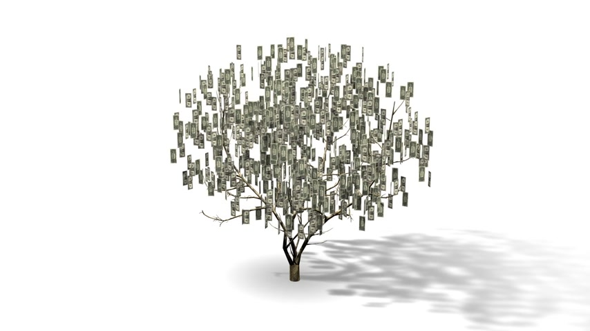 финансы : Money Tree with dollar bills in a looping 3D animation