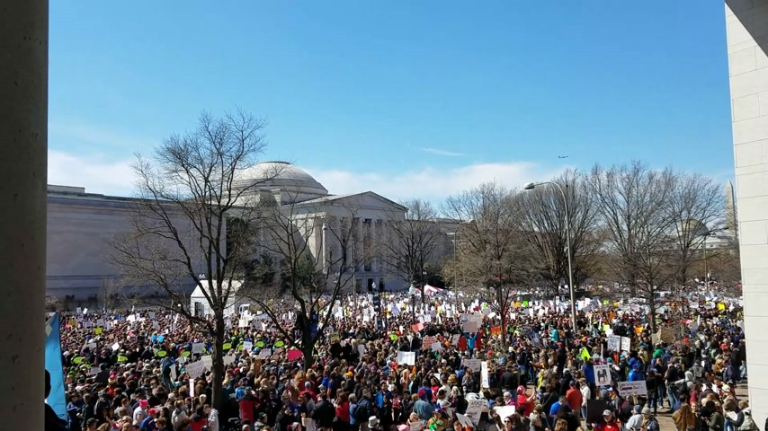 amendment : WASHINGTON, DC - MARCH 24, 2018: People participating in the March For Our Lives, a student-led rally with over 800 sibling events throughout the USA, asking for responsible gun control legislation.