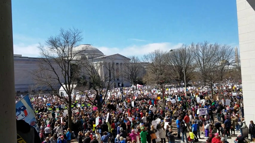 gösterici : WASHINGTON, DC - MARCH 24, 2018: People participating in the March For Our Lives, a student-led rally with over 800 sibling events throughout the USA, asking for responsible gun control legislation.