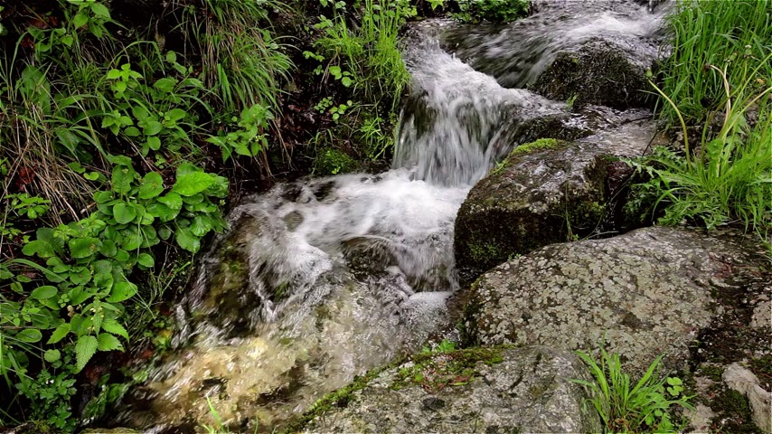 vida : close up of a small mountain stream