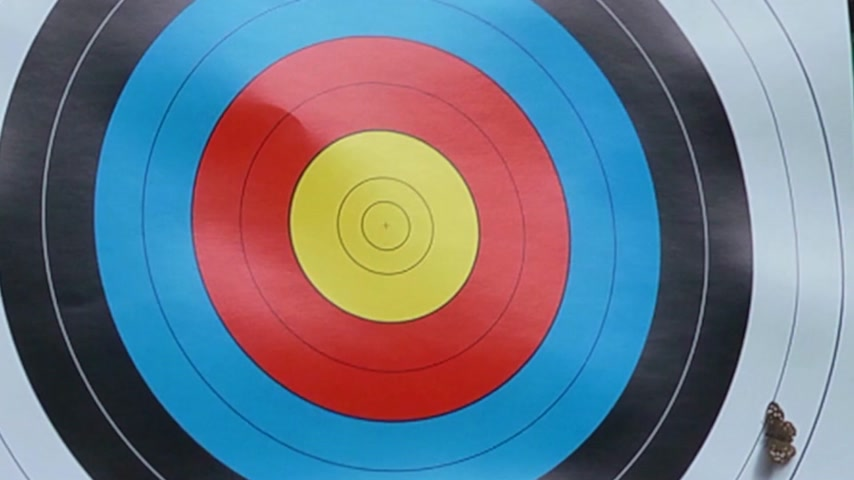 цель : Arrow hitting the bullseye of a target at archery, scaring away a butterfly