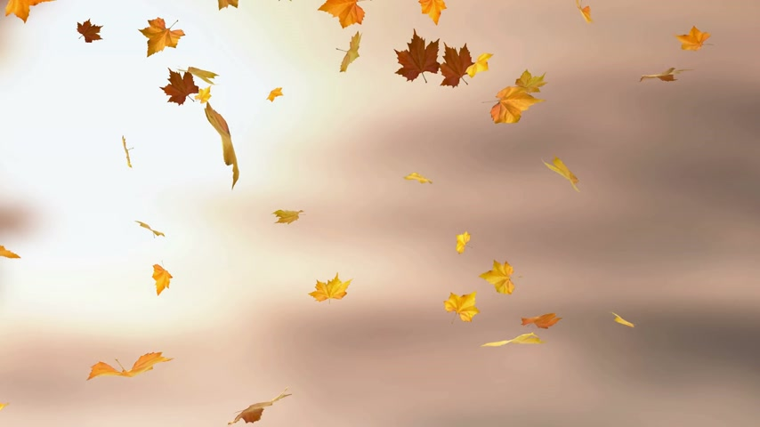 listki : Autumn background - loopable animation