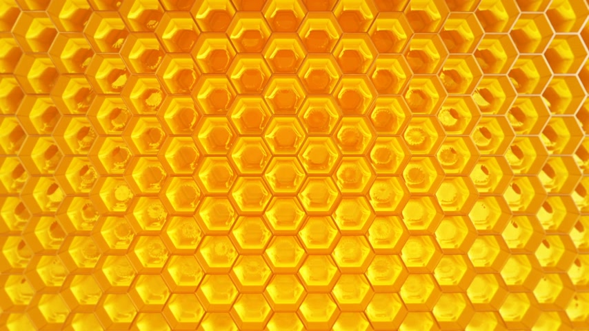 diferansiyel odak : Animation of fragment of honeycomb with full  cells in bright sunlight.