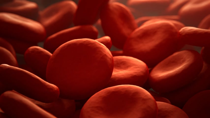 генетический : 01854 Close Up Of Red Blood Cells  In Artery