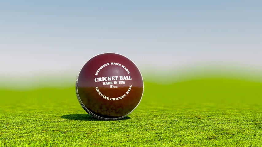 wicket : Cricket is a team sport for two teams of eleven players each. A formal game of cricket can last anything from an afternoon to several days. Stock Footage
