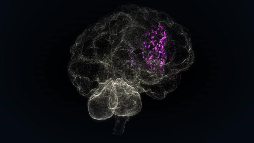 umysł : Animation presents the human brain made of small particles. Brain activity is showed as highlighted binary digits. Wideo