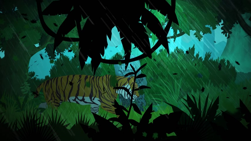 tribù : Tiger Walking In Jungle Durante Rainy Windy Day