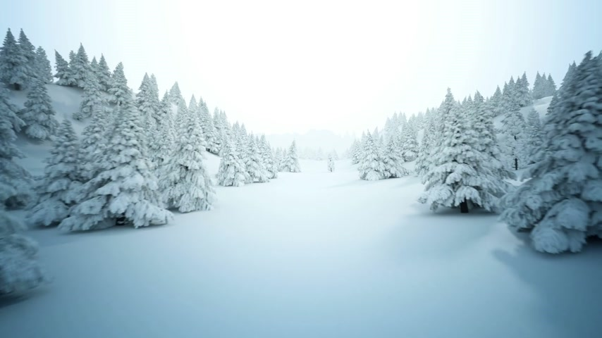 don : Winter snow landscape. High quality full CG animation showing hills with many pine trees covered by snow.