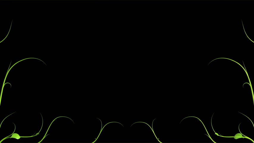 büyüyen : Green Plant pattern is growing on black in HD 1080.