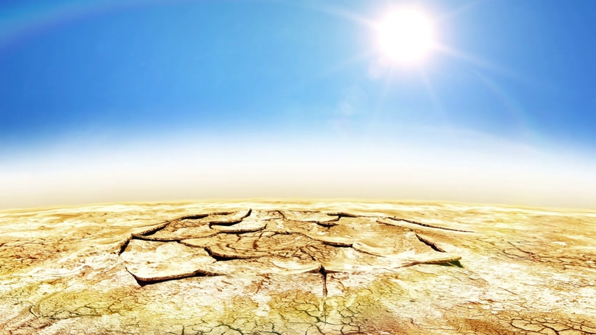 vida : Water Drop in Desert gives New Life. Grass and Tree Growing Beautiful animation. Business concept. HD 1080.