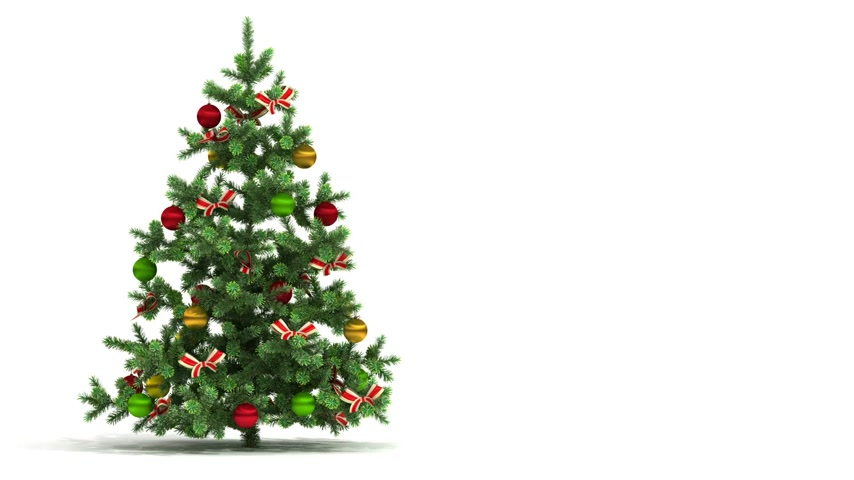 рождественская елка : Beautiful Christmas tree looped isolated on white background. New Year Presentation Concept. First 250 frames are loop-able. HD 1080. Alpha matte. Стоковые видеозаписи
