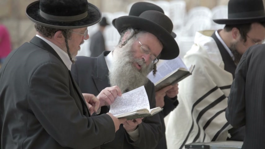 zsidó : Orthodox jews praying in the Western Wall. Jerusalem. Israel. slow motion