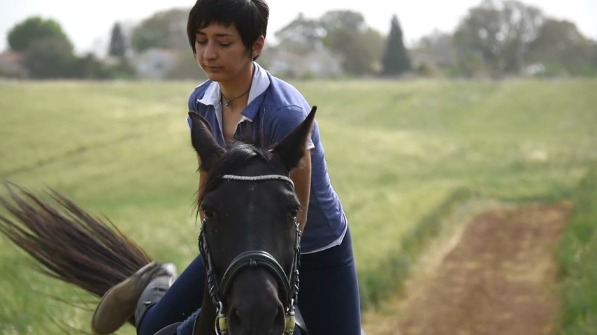 horse riding : Girl saddle up a horse and riding