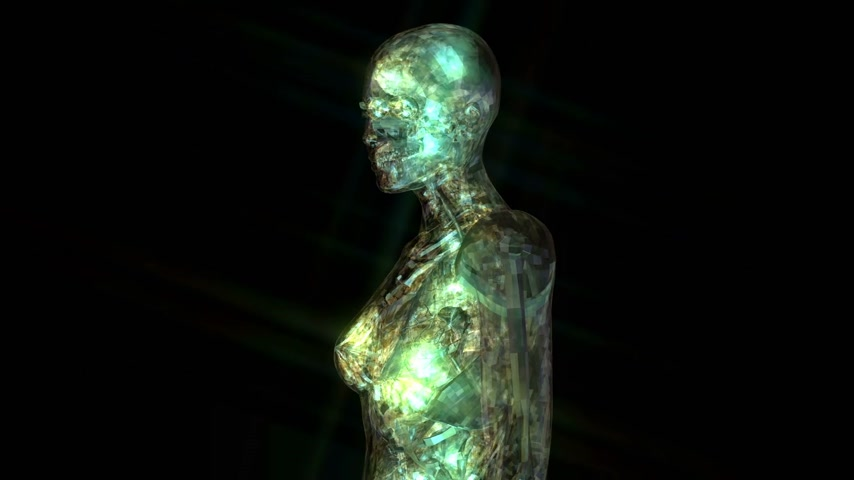 en az : Digital 3D animation of the human anatomy Stok Video