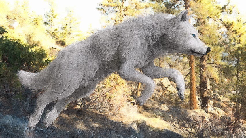 Digital artistic sketch animation of a wolf based on a self-created 3D illustration