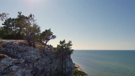 Landscape of Gotland Island, Sweden in the summer. Near the village of Lickershamn. A cliff in the foreground, with trees. In the background, the baltic sea, blue.
