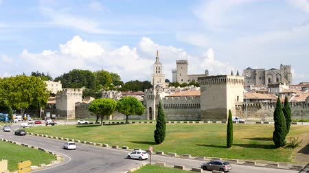 The Papal Palace is a historical palace located in Avignon, southern France. It is one of the largest and most important medieval Gothic buildings in Europe. Cars are passing in front of it.