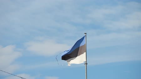 Flag of Estonia on the wind. Blue sky and a little cloudy in the background.