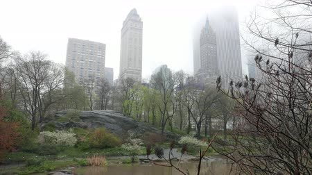 descobrir : Manhattan in the mist on a rainy day Stock Footage