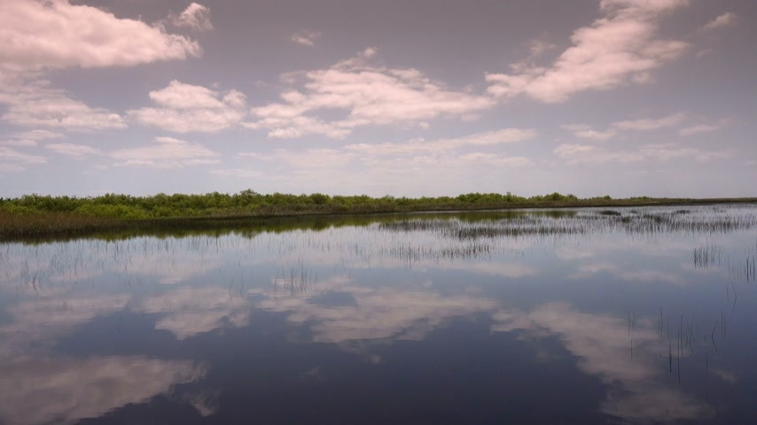 frisson : Hydroglisseur Ride in the Everglades près de Miami Vidéos Libres De Droits