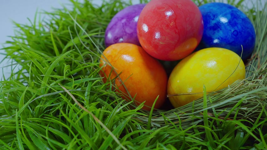nyuszi : Colorful Easter Eggs in a nest Stock mozgókép
