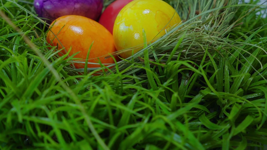 coelho : Colorful Easter Eggs in a nest Stock Footage