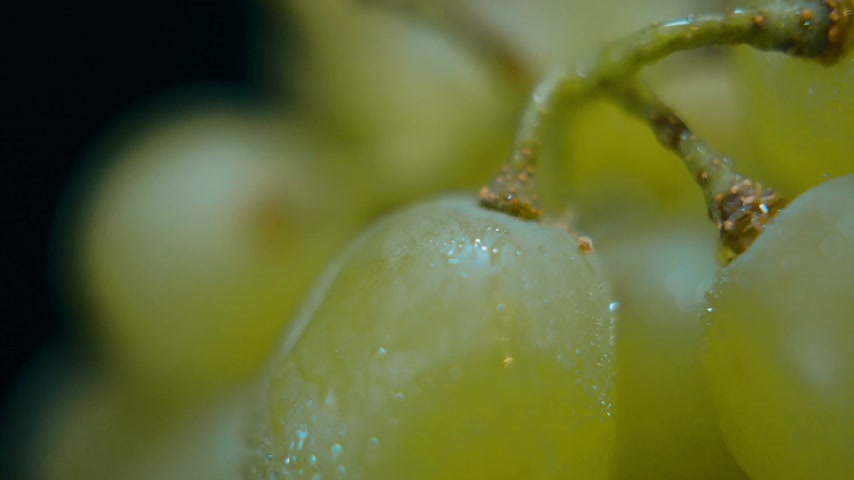 bakkaliye : Extreme close up shot of fresh grapes from the market Stok Video