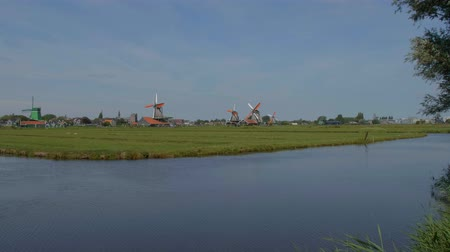 holandês : Windmills in the Netherlands - typical view in Holland Vídeos