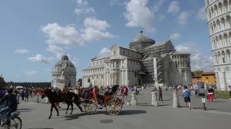 turistik : Horse drawn cab at Miracoli Square in Pisa with Leaning Tower and Cathedral - PISA TUSCANY ITALY - SEPTEMBER 13, 2017