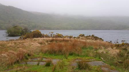広角 : Wonderful nature at Beara Peninsula - wide angle view 動画素材