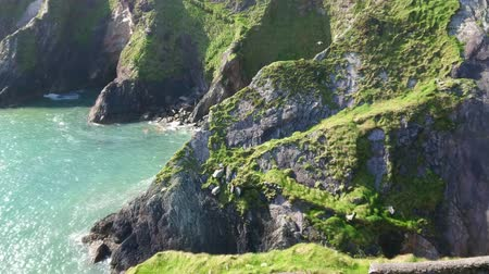 приморский : Amazing cliffs at Dingle Peninsula - wonderful landscape Стоковые видеозаписи